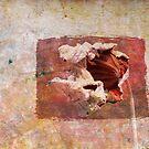Dried Leaf by krddesigns