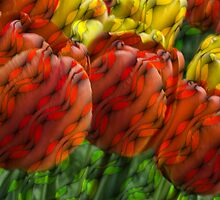 tulips lattice style by cherylc1