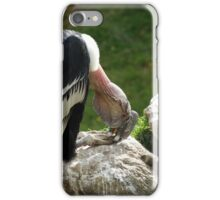 Andean Condor Perched on a Rock iPhone Case/Skin
