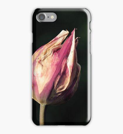 Sun-dried Tulip iPhone Case/Skin