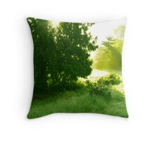 """""""Bathed In Gold"""" Throw Pillow"""