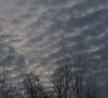 Grey sky of storms beginning Sticker