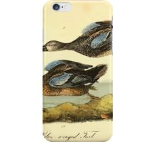 James Audubon Vector Rebuild - The Birds of America - From Drawings Made in the United States and Their Territories V 1-7 1840 - Blue Winged Teal iPhone Case/Skin
