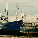 DA 60 Dry Dock by Finbarr Reilly