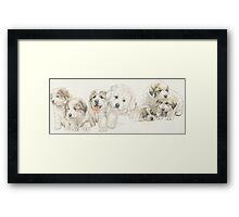 Great Pyrenees Puppies Framed Print