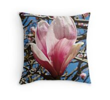 One Beautiful Magnolia Flower Throw Pillow