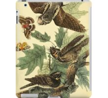 James Audubon Vector Rebuild - The Birds of America - From Drawings Made in the United States and Their Territories V 1-7 1840 - Whip Poor Will iPad Case/Skin