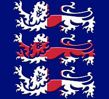 England St. George Flag Three Lions by kerchow