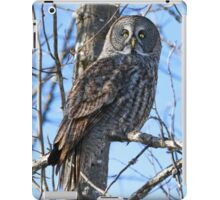 Watcher of the woods iPad Case/Skin