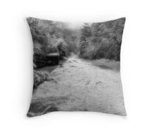 a winter drive Throw Pillow