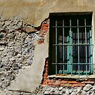 The window by annalisa bianchetti
