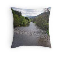 Along the River Broom Throw Pillow