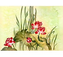 Lotuses in the Grass Photographic Print