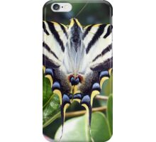 Swallowtail Butterfly Resting on Oleander Leaves iPhone Case/Skin