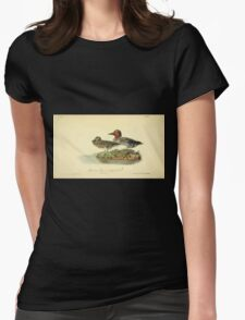 James Audubon Vector Rebuild - The Birds of America - From Drawings Made in the United States and Their Territories V 1-7 1840 - American Green Winged Teal Womens Fitted T-Shirt