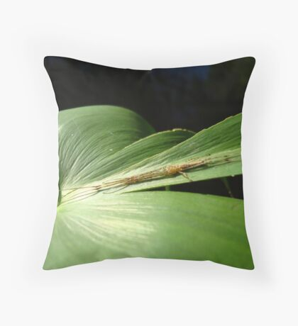 Long Jaw Orb Weaver on Pickerel Weed Throw Pillow