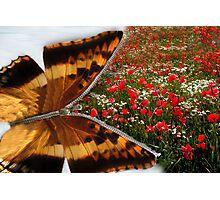 Zip into Spring! Photographic Print