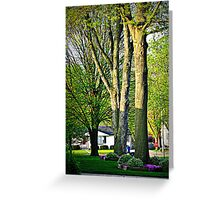 Trees In The Neighborhood Greeting Card