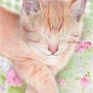 Shabby Chic Cat by Karen  Hull