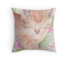 Shabby Chic Cat Throw Pillow