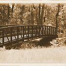 Just A Bridge  by Jennifer  Burgess