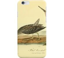 James Audubon Vector Rebuild - The Birds of America - From Drawings Made in the United States and Their Territories V 1-7 1840 - Red Breasted Snipe iPhone Case/Skin