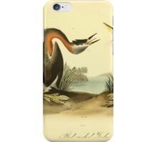 James Audubon Vector Rebuild - The Birds of America - From Drawings Made in the United States and Their Territories V 1-7 1840 - Red Necked Grebe iPhone Case/Skin