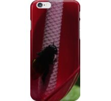 flower and fly - flor y mosca iPhone Case/Skin