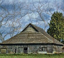 Skagit Barn Surrounded by Appel