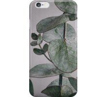 Eucalyptus Study 1 iPhone Case/Skin