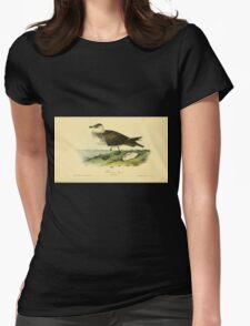 James Audubon Vector Rebuild - The Birds of America - From Drawings Made in the United States and Their Territories V 1-7 1840 - Pomerine Jager Womens Fitted T-Shirt