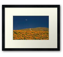 Poppies and the Man in the Moon Framed Print