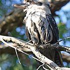 Bird # 1 by Aaron Blackwell