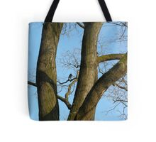 dark crow in the tree Tote Bag