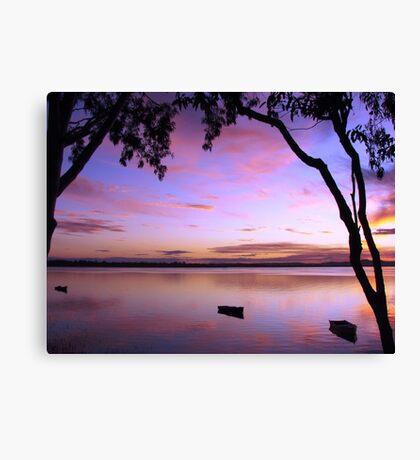 Purple Boat Gum Sunset Canvas Print