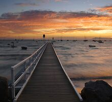 Camerons Bight Jetty by Matt Bishop