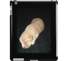 Wendy the Yellow Lab Mix Puppy Napping iPad Case/Skin