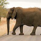 Mama Elephant by Vickie Burt