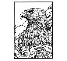Pen and Ink collection -eagle Photographic Print