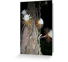 """Queen of the Night"" Greeting Card"