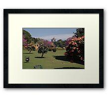 Cubbon Park, Bangaluru Framed Print