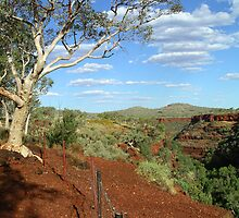 Dales Gorge, Karijini National Park, WA by KathrineLouise