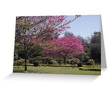 Cubbon Park, Bangaluru Greeting Card