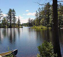 Tully Lake by Bob Gaffney