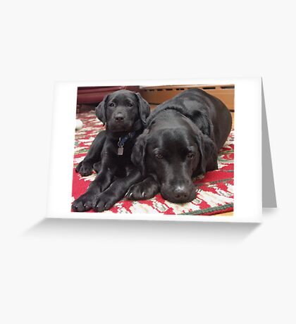 Scooter and Her Stepmother Winnie Greeting Card