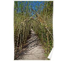 The Willow Walk Poster