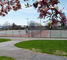 Anyone for tennis? by Lisa Brower