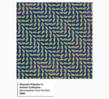 Animal Collective Cover Art by Timothy Mahoney