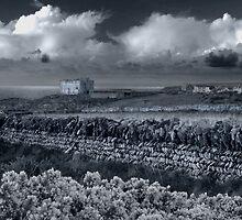 Tintagel view by M G  Pettett
