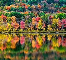Colorful Fall Landscape by Christina Rollo
